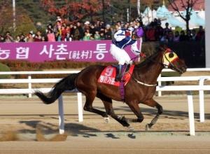 Myeongmun Gamun winning the President's Cup (Sports Munhwa)
