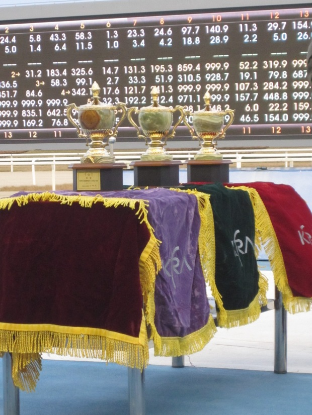 The President's Cup is one of the most valuable races in the Korean racing year