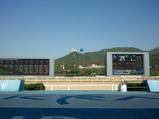 The Japanese flag is likely to be seen over Gwacheon again this year