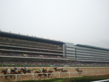 There will be 96 days of racing at Seoul in 2013