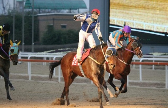 Tough Win and Cho Kyoung Ho win the Grand Prix Stakes in 2011 (KRA)