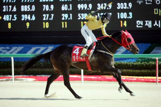 Gyeongudaero, seen here winning the KRA Cup Mile as a 3-year-old, heads the Busan Ilbo line-up(KRA)