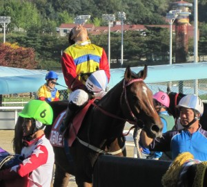 I'm Free! Moon Se Young is among 11 jockeys going freelance