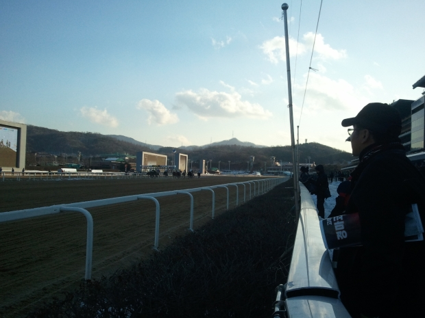Closing Day 2012 - Seoul Racecourse, December 23