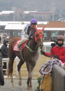 Global Fusion and Cho Kyong Ho return after winning the New Year Stakes