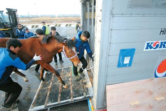 Seoul Bullet on his way to the USA last year (KRA)