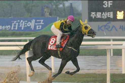 Ebony Storm wins the 2008 Derby in a downpour (KRA)