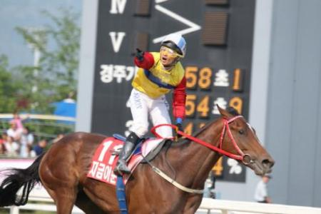 Jigeum I Sungan was the 2012 Korean Derby winner (KRA)