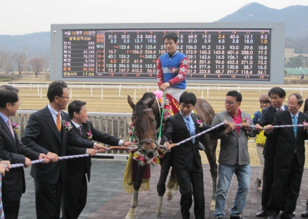 Hold On! Connections and jockey Choi Si Dae struggle to hold Useung Touch in the Ttukseom Cup winner's circle