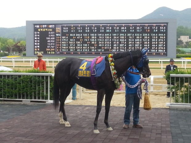 Remember Bulpae Waits in the JRA Trophy Winner's Circle