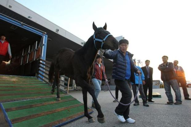 Journey Ends in Winner's Circle - K Pop on his way to export in 2011 (KRA)