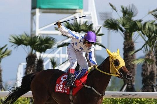 Jo Chan Hoon, who rides at the Selangor Turf Club this weekend, winning the 2008 Korean Oaks on Jeolho Chance