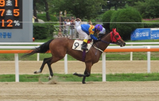 Fly Top Queen coasts to victory at Seoul