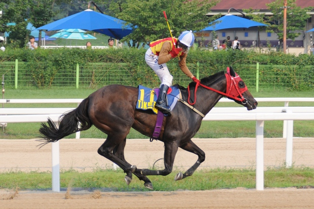 Full Moon Party and Jo In Kwen win the Turkey Jockey Club Cup