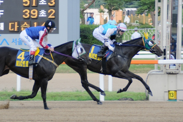 Noel Callow on Victory Dancer edges out Fausto Pinto on Blue Camp to win the MJC Trophy