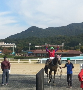 Fausto Durso returns after winning on his first mount as a full-time jockey in Korea