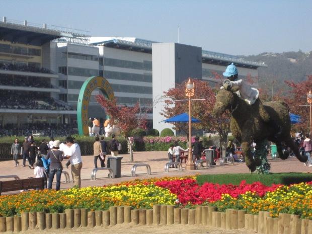 There was some late autumn sun at Seoul Racecourse this weekend last year - rain is forecast this