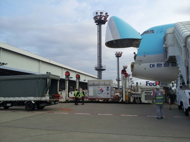 The horses arrived by Korean Air last Thursday