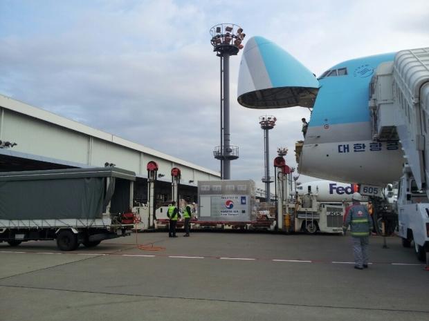 The horses arrived by Korean Air last Thursday