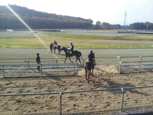 Into the light: Trackwork at Nasu (Pic: KRA)