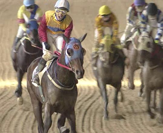 Moon Se Young is delighted with Smarty Moonhak in this screengrab from Seoul Racecourse today