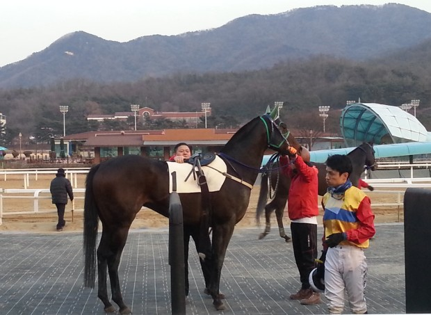 A smile would be nice: Even after Bichui Wangja give s him his 6th winner of the day, Moon Se Young is in no mood for celebration