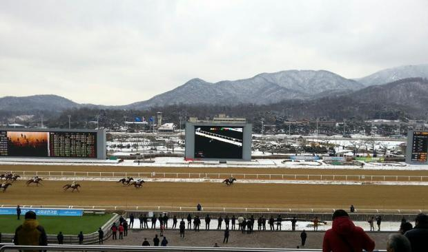 It was another wintry weekend in Seoul
