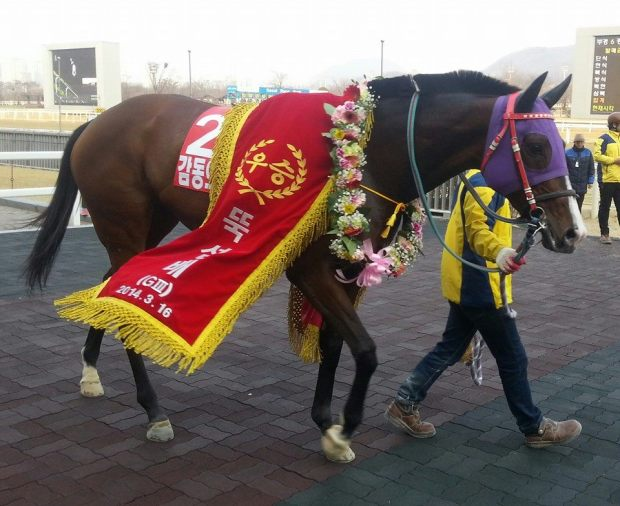Gamdonguibada in the Ttukseom Cup winner's circle, the first leg of the Queens' Tour. She won the 2nd leg too