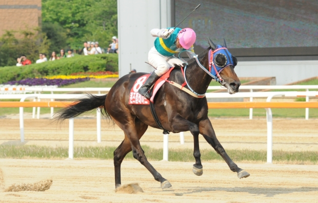 Nothing else in sight. Kim Yong Geun and Queen's Blade win the 2014 Korean Derby (Pic: Ross Holburt)