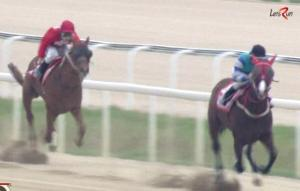 Gamdonguibada leads New York Blue in the home straight (screengrab - better picture to follow)