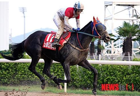 Nobody Catch Me won the 2014 Busan Metropolitan (Newsis)