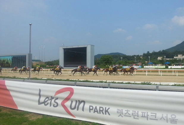 Let's Run! And we are running this week, albeit not much at Seoul