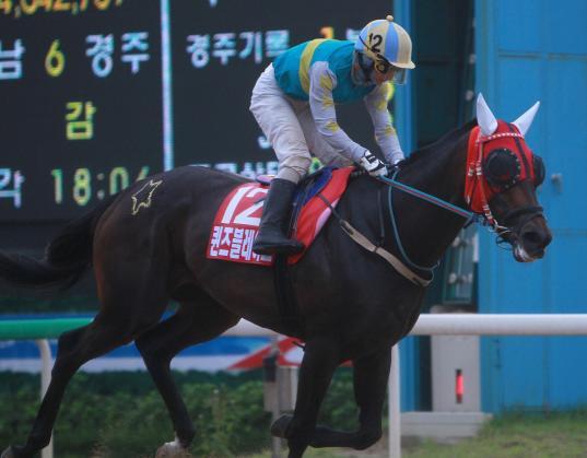 Queen's Blade and Kim Yong Geun win the Korean Oaks (KRA).