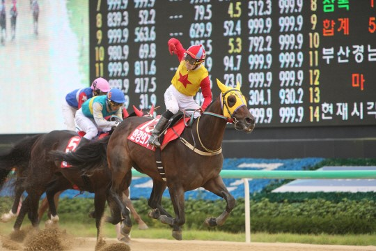 Hangangui Gijeok and You Hyun Myung win the Owners' Cup at Busan. Can they add a President's Cup too? (KRA)