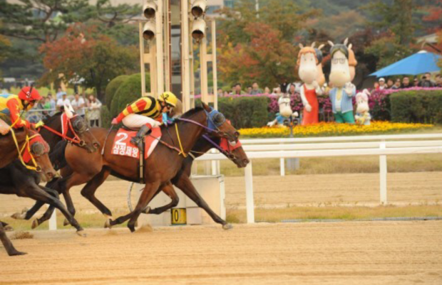 Samjeong Jewang just gets up to beat Rush Forth (obscured) in the KRA Cup Classic (Pic: KRA)