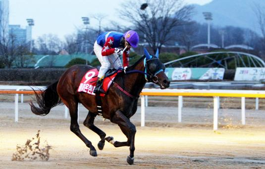 Doraon Hyeonpyo and Choi Si Dae win the Breeders' Cup at Seoul (Pic: KRA)