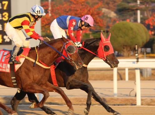 Gyeongbudaero (far side) just edges Best Captain in the President's Cup (Pic: KRA)