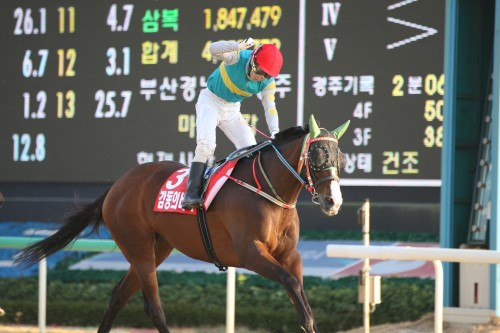 Gamdonguibdada wins the Gyeongnam Governor's Cup (Pic: KRA)