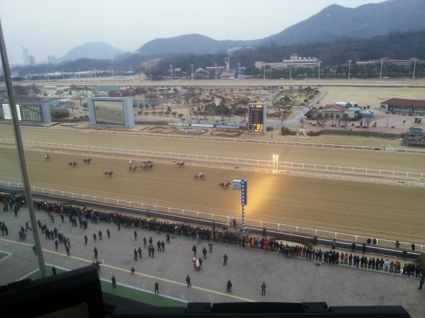 The view from above as Gyeongbudaero wins the Grand Prix Stakes