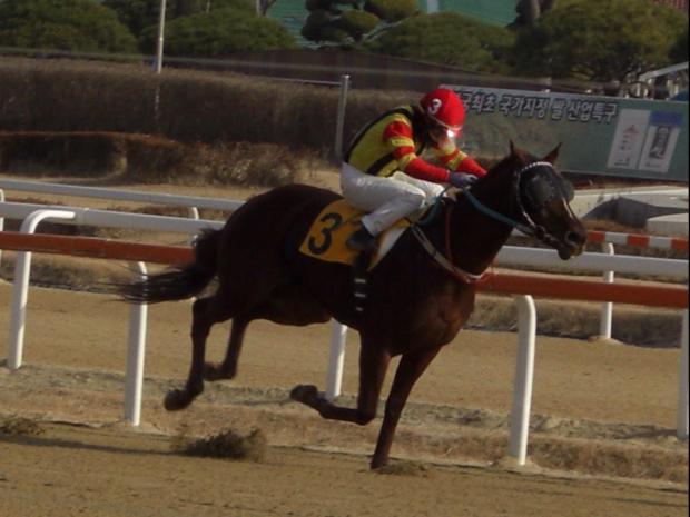 Yeoui King takes Ikuyasu Kurakane to winner 99 of the year (Picture: Hiromi Kobayashi)