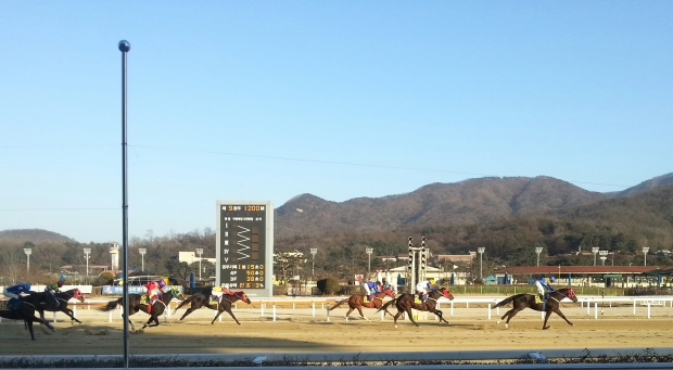 Gwanggyo Bisang was an easy winner of the Segye Ilbo Cup at Seoul on Sunday