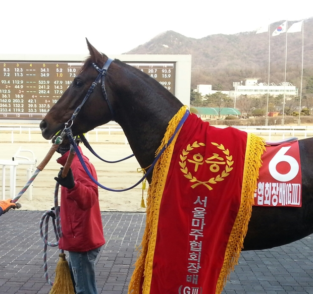 Namhae Daewang stands to attention in the Owners' Trophy winner's circle