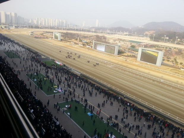 Seoul hosts the final filly & mare Stakes race of the season on Sunday