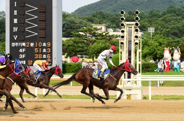 Areumdaundonghaeng and Song Jae Chul win the YTN Cup (Pic: KRA)