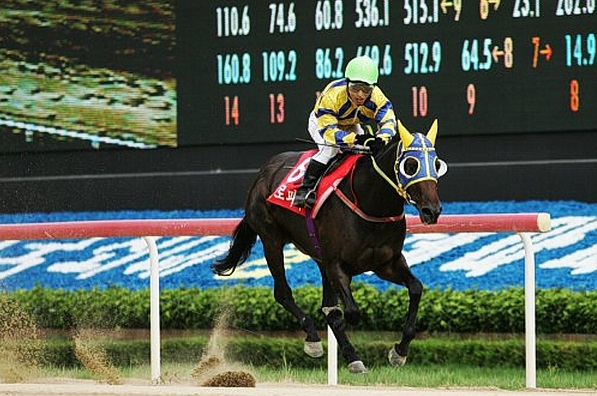 Eurofighter was the last filly from Seoul to win the Korean Oaks