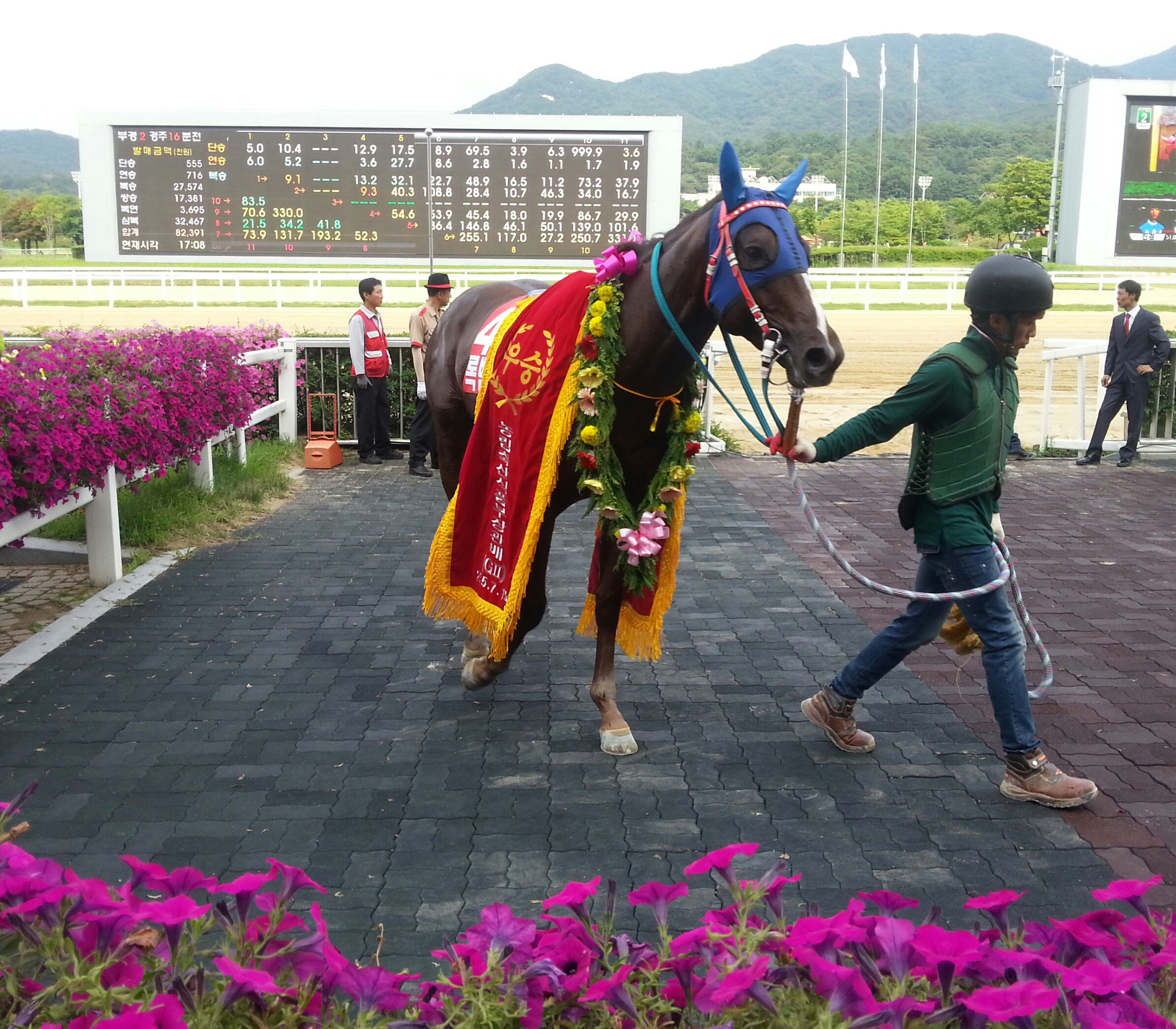 Horse racing winners circle pictures