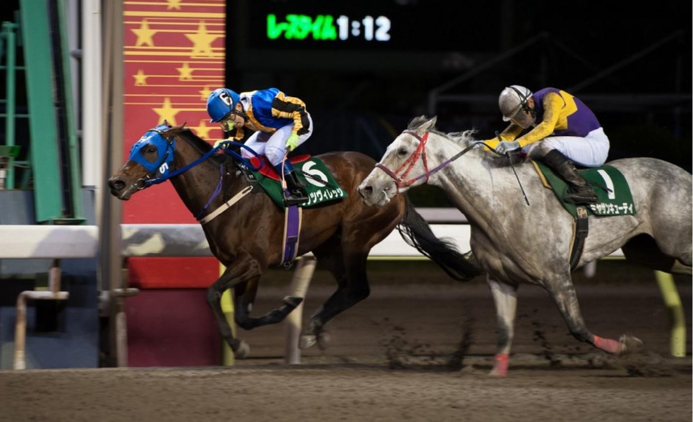 Horse Racing Previews