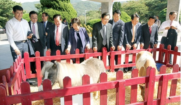 Ponies! The big ammunition was rolled out for the National Assembly visit on Monday (Pic: Agrinet)