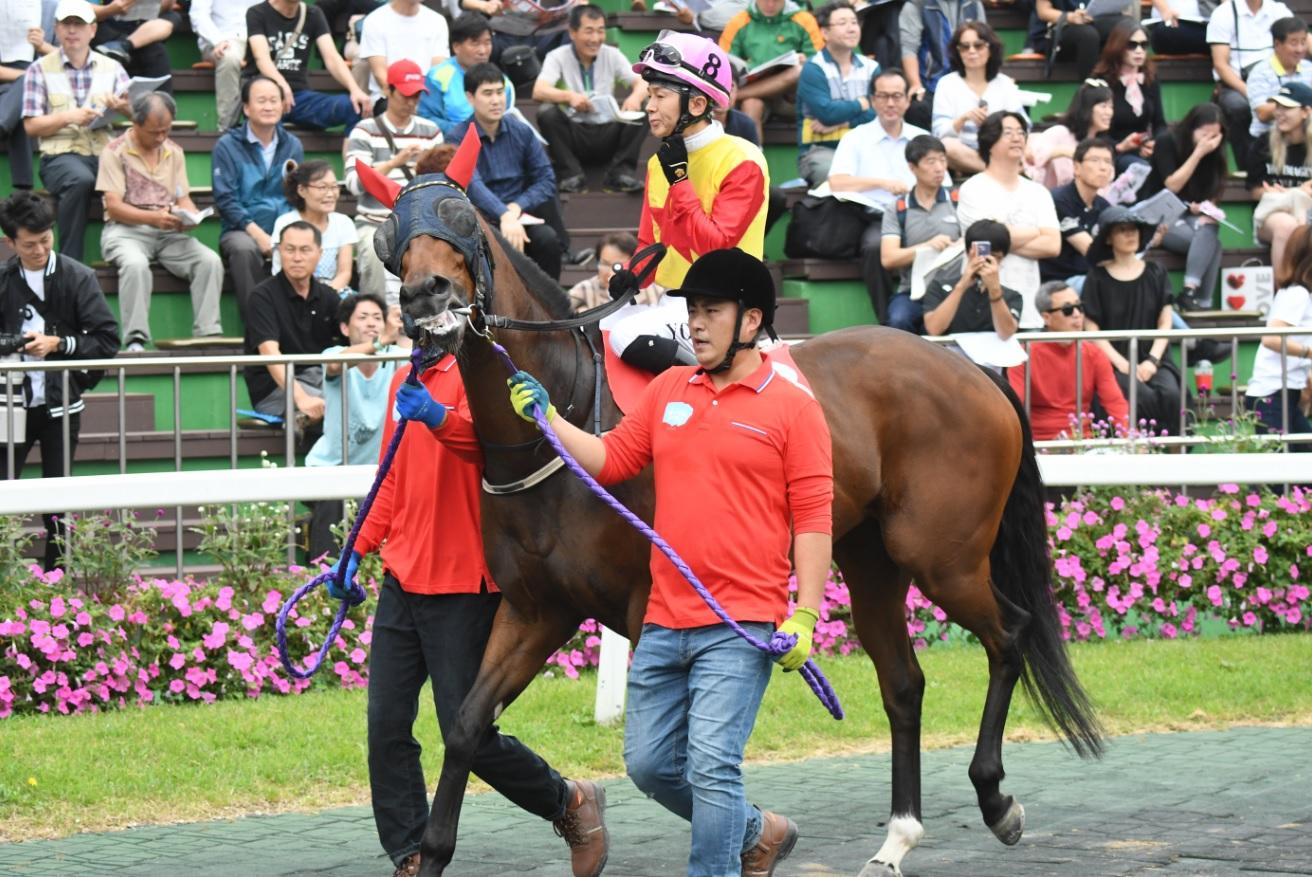 Haya at the Korea Sprint