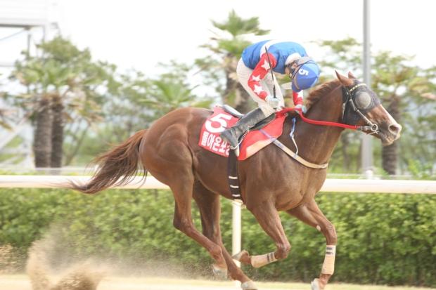 Doraonpogyeongseon Owners Cup Korea Racing Authority